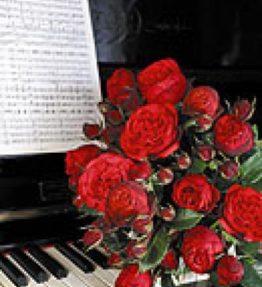 piano_tejhibridrozes_sarkana