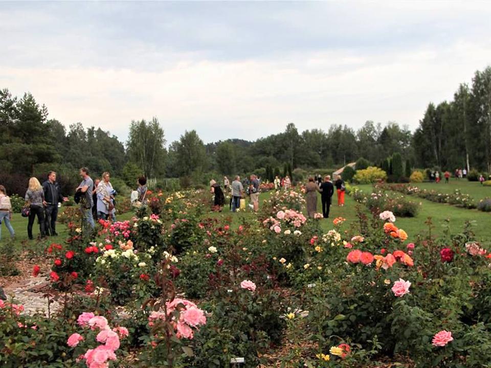 rozu-kolekcijas-darzs-2